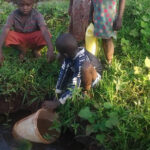 Water Crisis in our Orphanage
