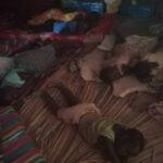 Sleeping materials needed (beds, blankets mattresses)